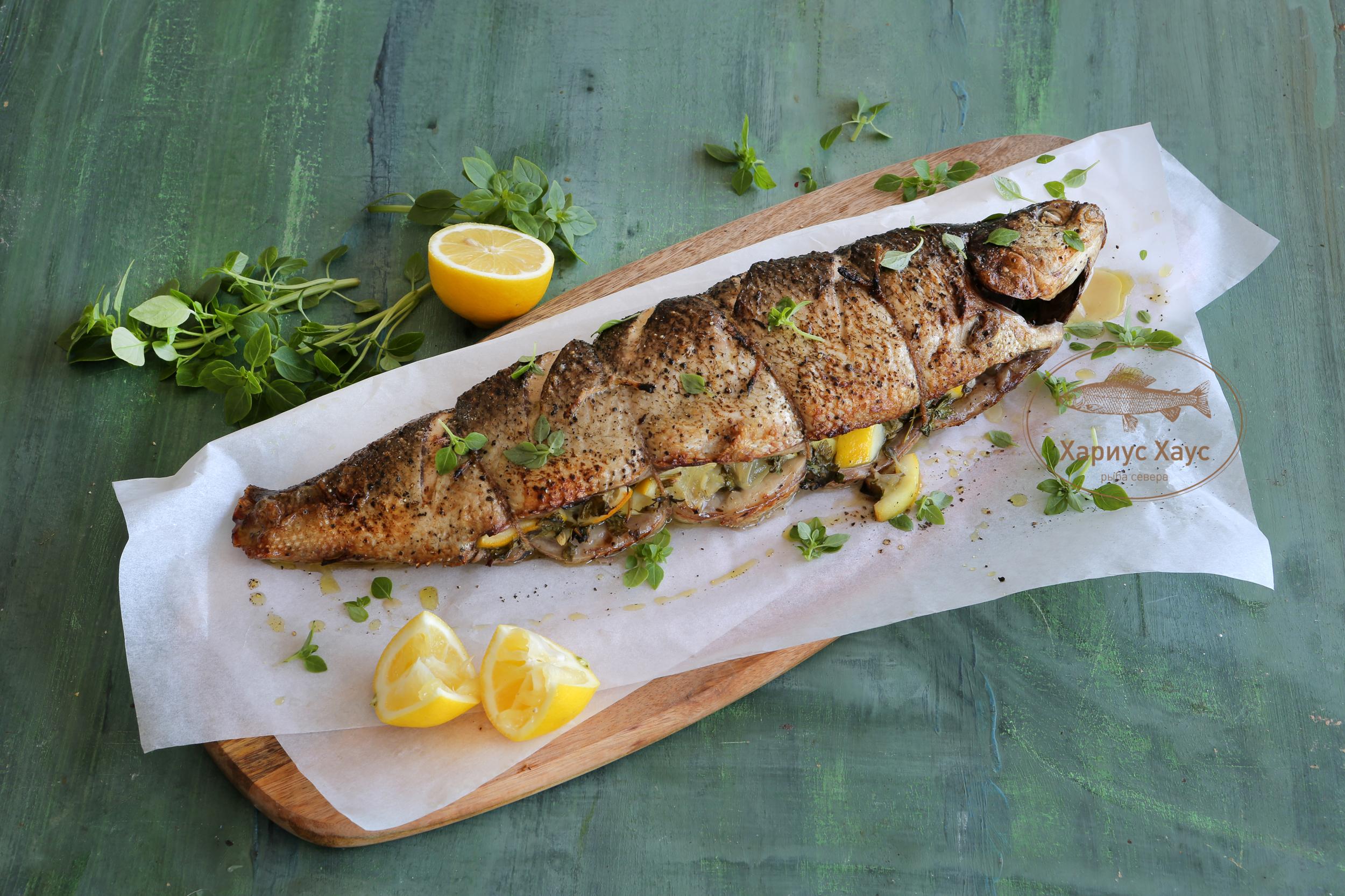 Рыба чир (щокур) | 1667x2500